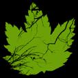 Plantgasm