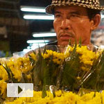 Don't Stop Walking in the Bangkok Night Flower Market