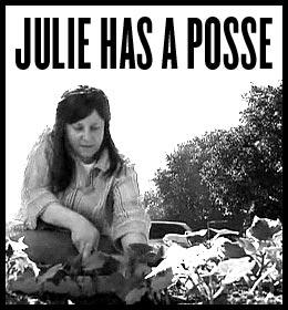 Julie Has A Posse